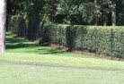VIC Burwood Chainmesh fencing 11